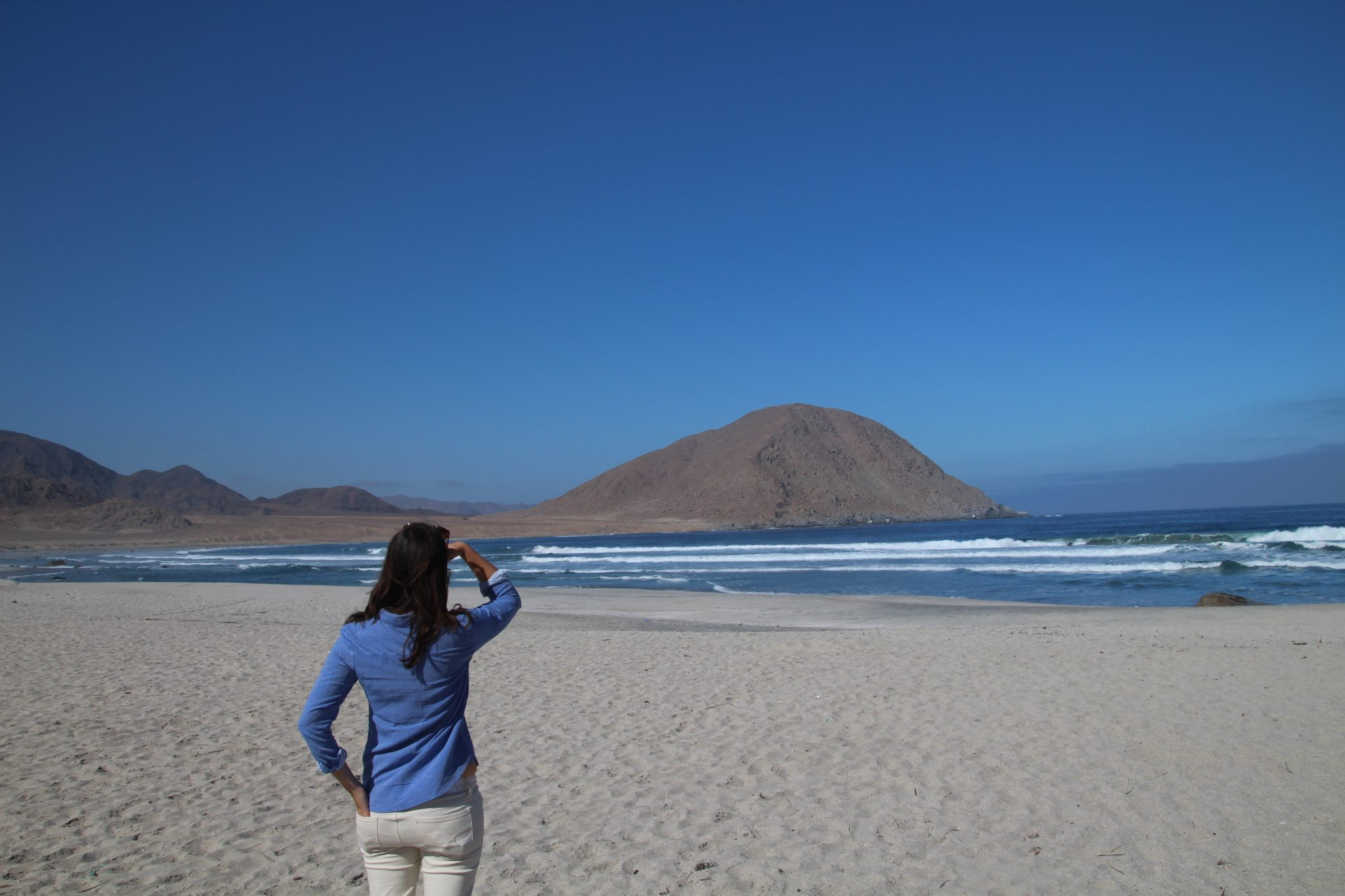 playa blanca atacama chili pan de azucar