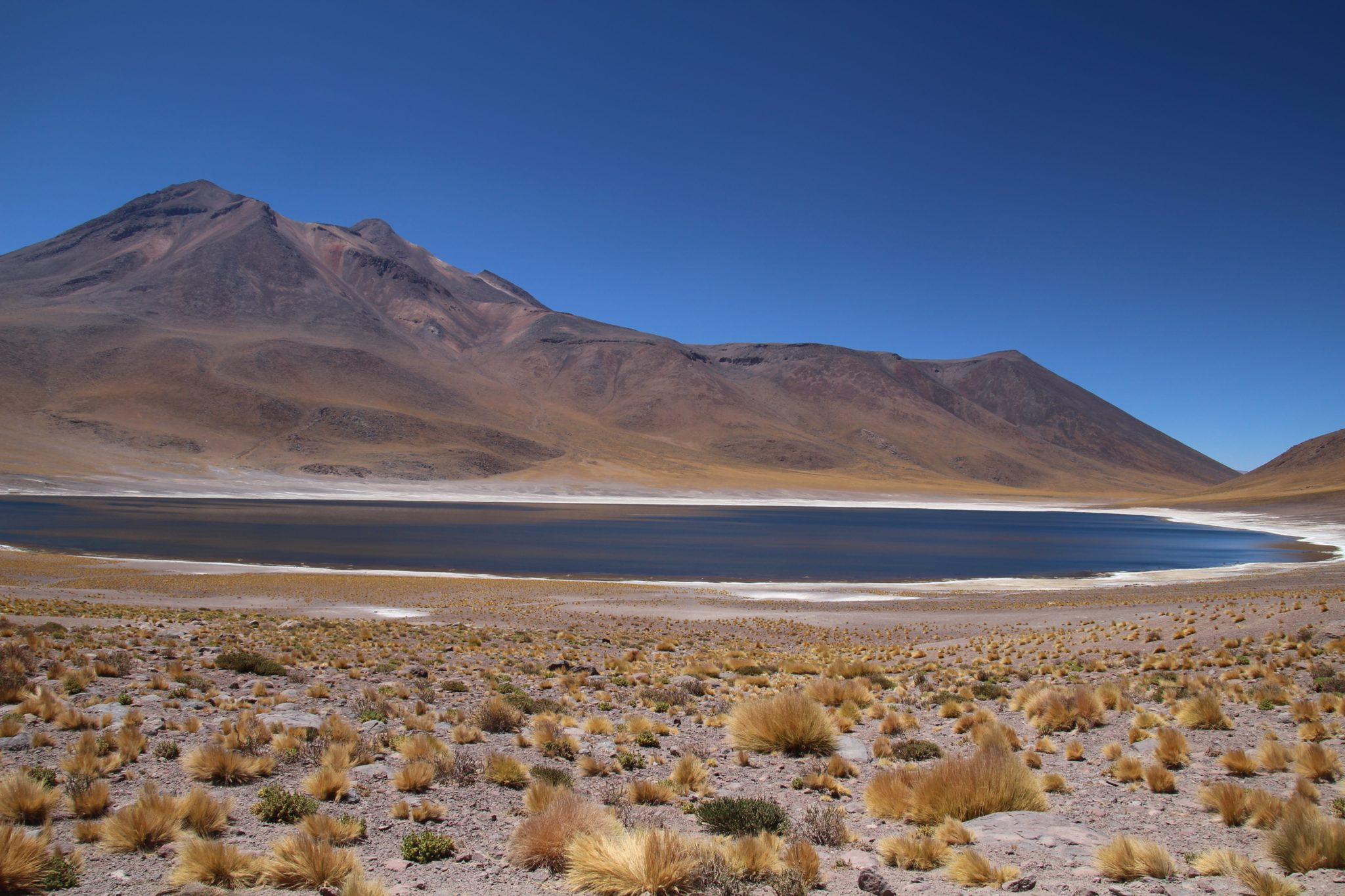 laguna miscanti lagune bleue desert d atacama chili