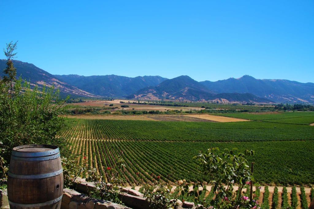 santa cruz vignoble domaine viticole colchagua