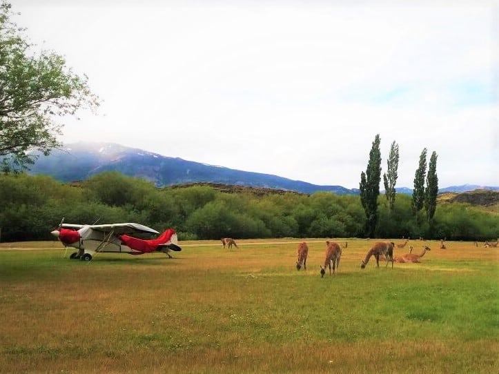 parque patagonia chili route australe guanaco helicoptere