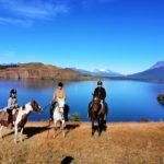 Cheval patagonie laguna sofia chili randonnée équestre
