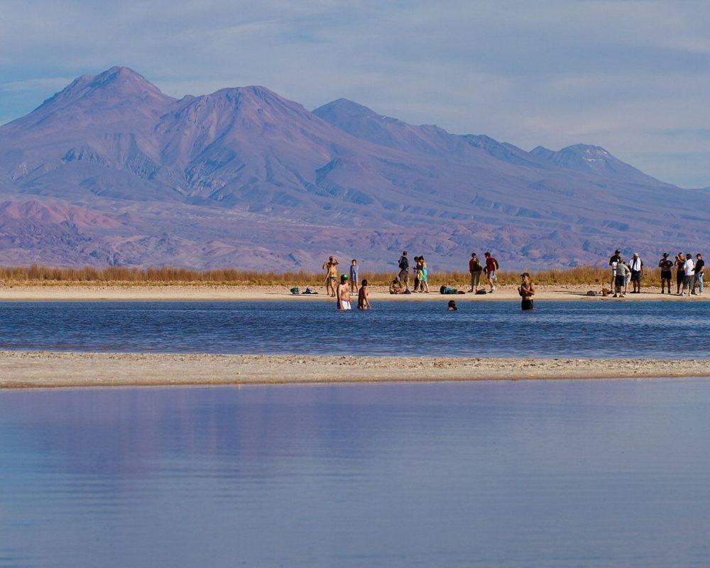laguna cejar atacama désert baignade flottaison chili