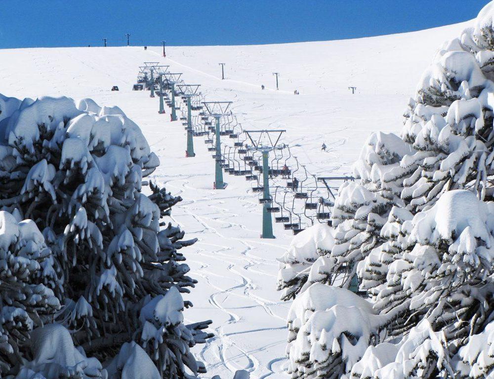 las Araucarias Ski Conguillio 2