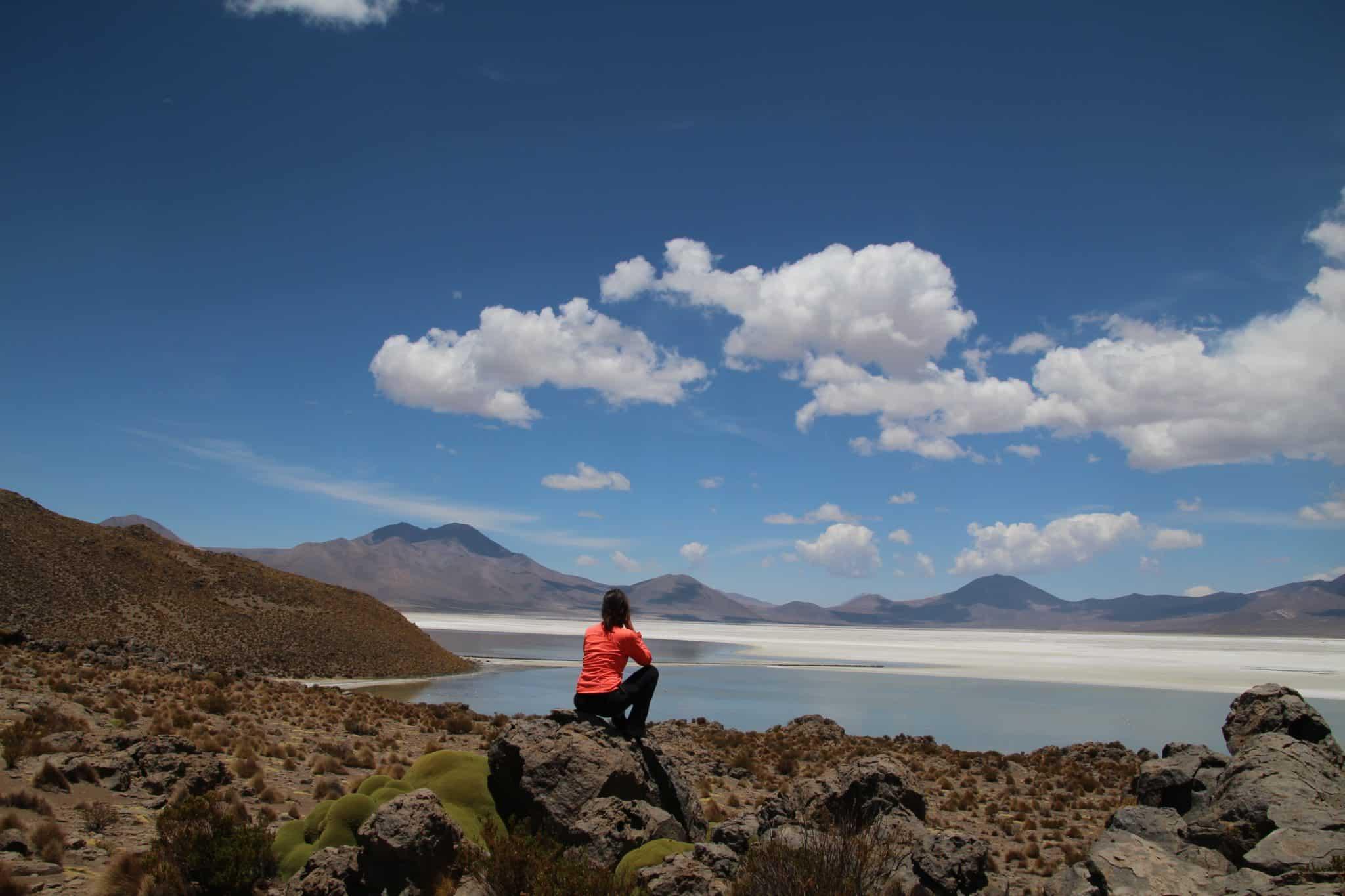 face au désert de surire dans l altiplano chili