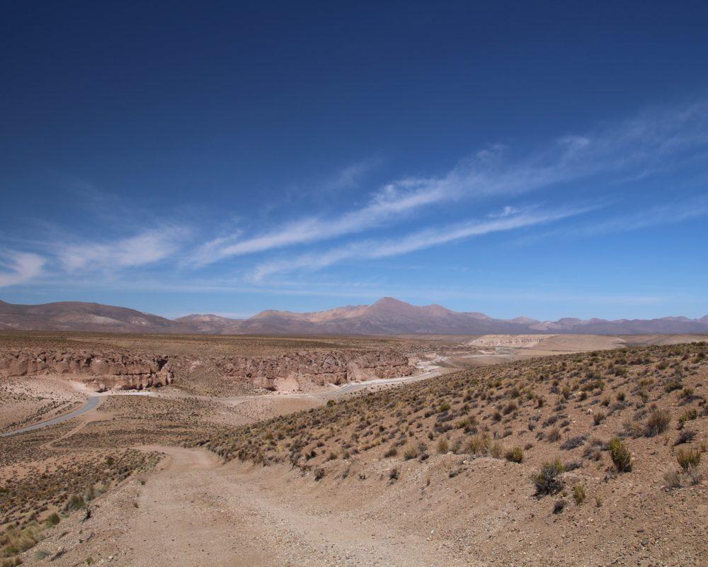 sur la route dans l'altiplano au chili, pres de putre et de la réserve des vicuñas