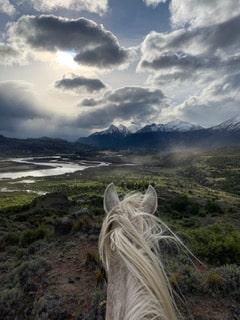 randonnée équestre en Patagonie près de la laguna sofia sur un cheval blanc