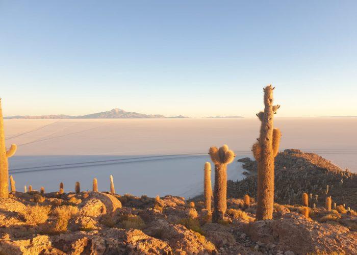 lever de soleil désert d Uyuni ile incahuasi pescadores cactus salar