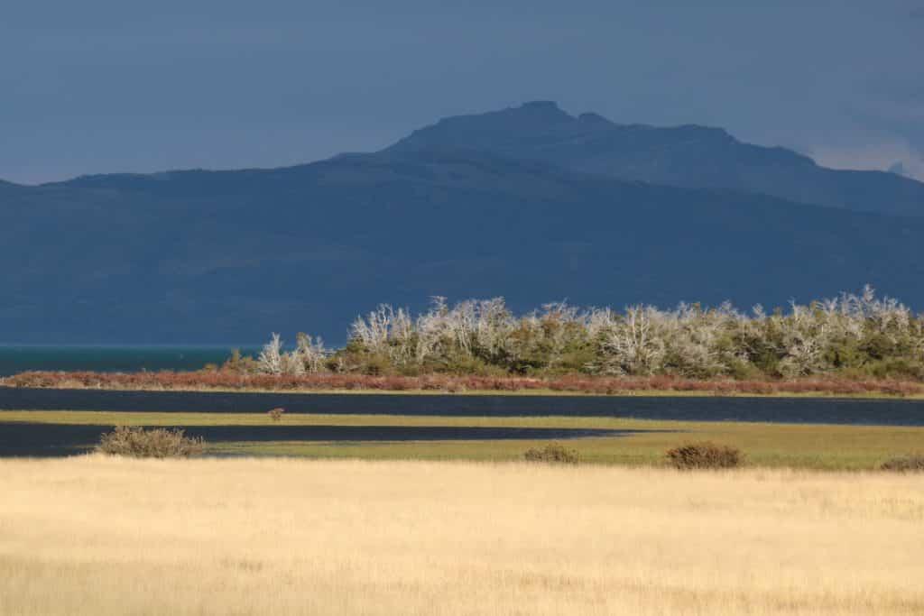 Patagonie, différentes tonalités (lac, champs doré) et montagne