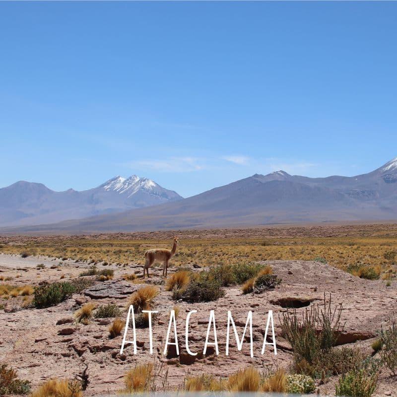 A trip off the beaten track to San Pedro de Atacama