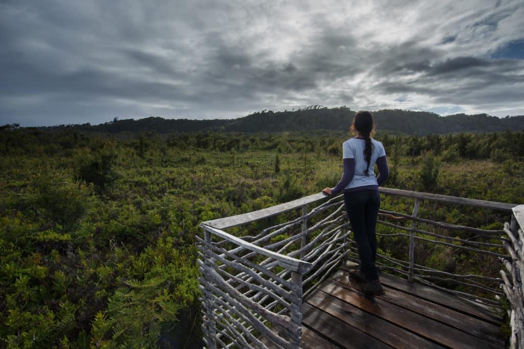 parc national chiloé chili