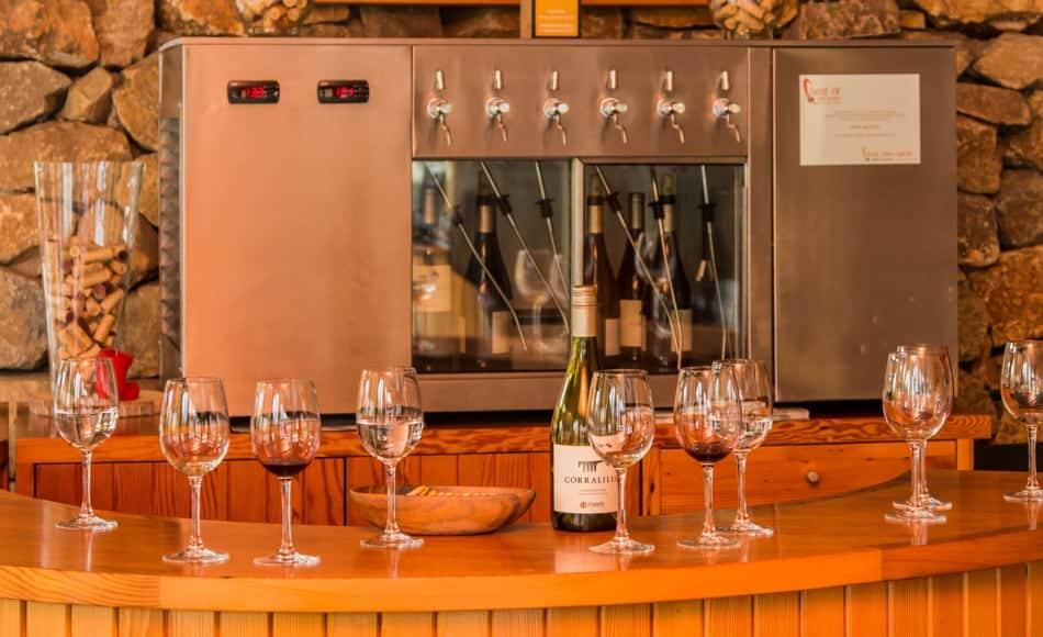 Dégustation de vin Matetic