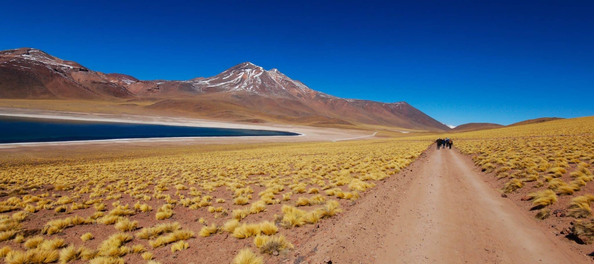 lagune miscanti miñiques altiplano chili desert atacama