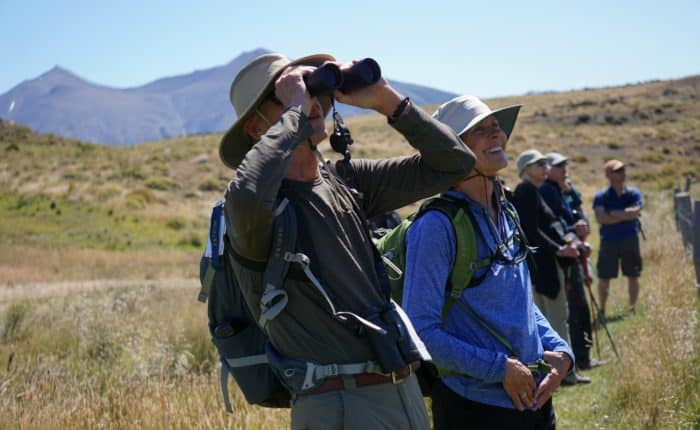 wildlife safari madre roca