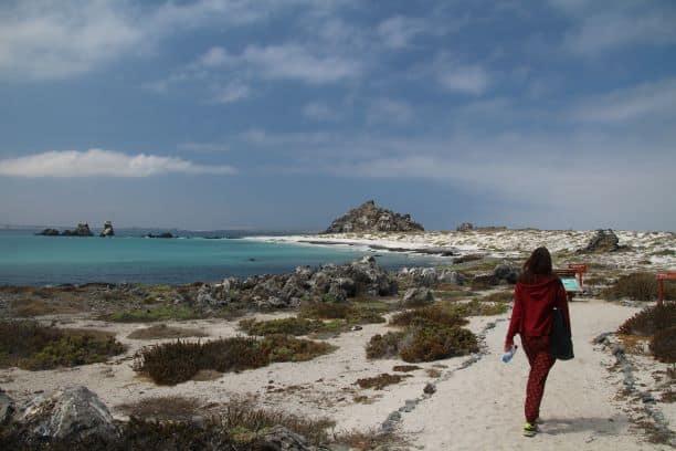 Week-end a la plage au Chili